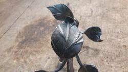 Листья кованой розы